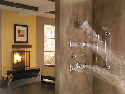 Moen's Chrome ExactTemp Transfer Vertical Spa