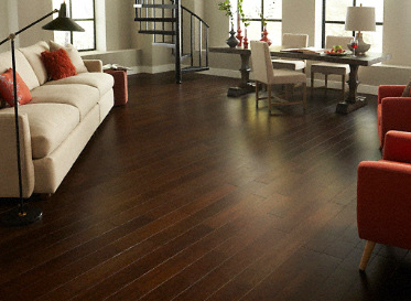 Eco Friendly Bamboo Floors