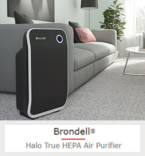 A Sleek, Affordable Air Filter That Removes Dust, Pollen, and Smoke