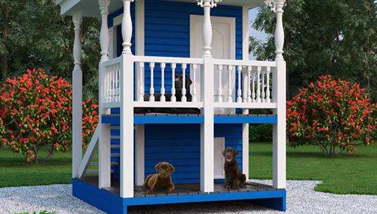 image of Luxury Doghouse & Playhouse House Plan