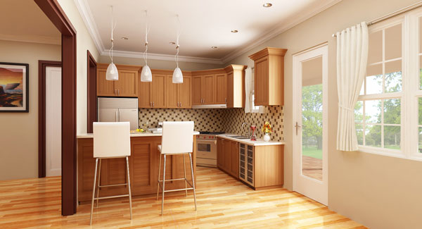 Small Kitchen Home Design