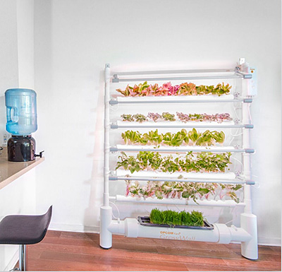 10. An Eco-Friendly, In-Home Produce Stand