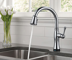 6-Delta® Cassidy™ Kitchen Collection