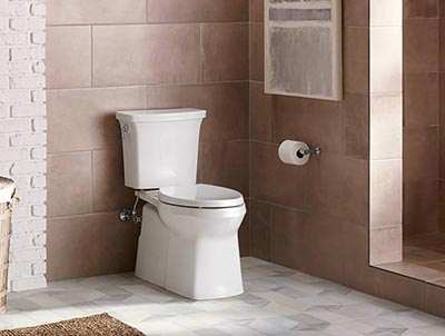 An EPA and ADA Approved Toilet Everybody Will Love